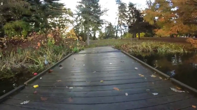Video of a bridge in the outdoors during autumn.
